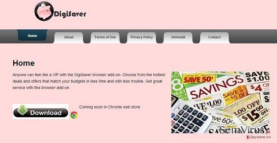 obrázek pro DigiSaver